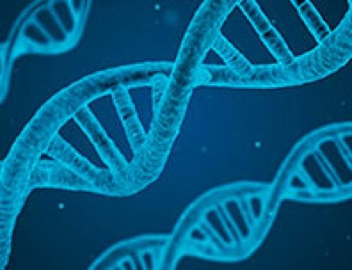 Test genético preimplantacional no mejora las posibilidades