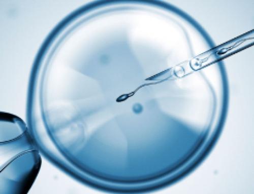 Nacimientos a través de Reproducción asistida